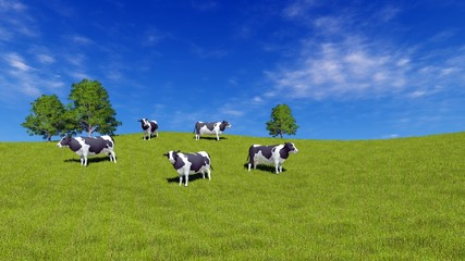 Wall Mural - Mottled milk cows graze on the open meadow covered with fresh green grass under blue sky at sunny day. Rural landscape 3D illustration.