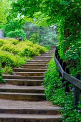 Stairway at a Wildflower Garden