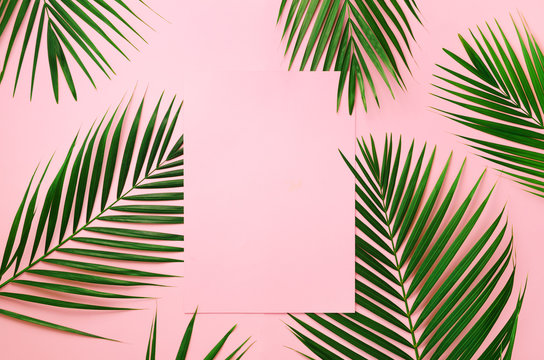 Tropical palm leaves on pastel pink background with paper card note. Minimal summer concept. Creative layout. Top view, flat lay. Green leaf on punchy pastel paper