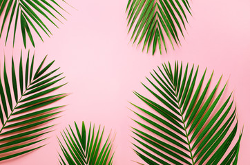 Tropical palm leaves on pastel pink background. Minimal summer concept. Creative flat lay with copy space. Top view green leaf on punchy pastel paper