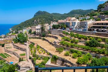 Banyalbufar, aerial view, mallorca