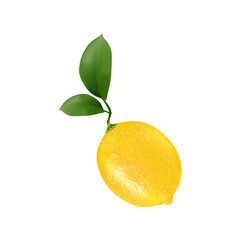 Lemon fruit for fresh juice. 3d realistic yellow  ripe lemon with green leaves isolated on white background for packaging or web design. Vector