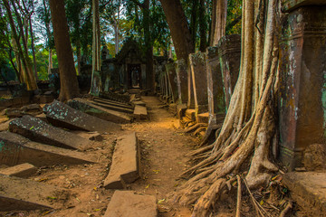 Old ruins of ancient complex Koh Ker, Cambodia