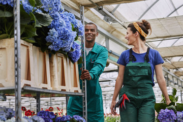 Smiling Florists With Trolley In Greenhouse