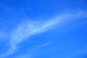 Blue sky with fluffy white clouds.