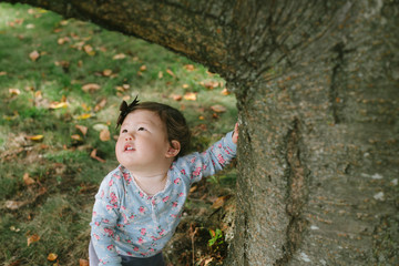 Baby holding tree and looking up at leaves