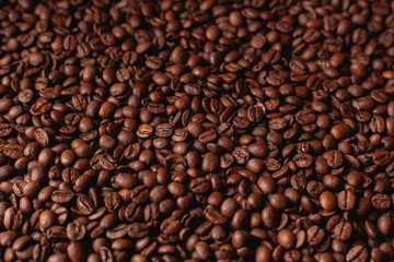 A lot of coffee beans after roasting