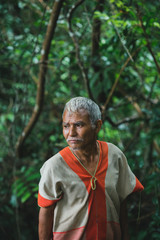 Senior Karen people harvesting wild cinnamon in the forest