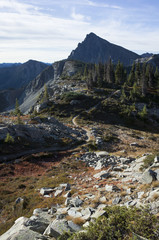 Hiking trail extending through expansive alpine meadow, Pasayten Wilderness, Washington