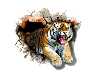 Sticker tiger jumps out of the wall . 3D rendering.