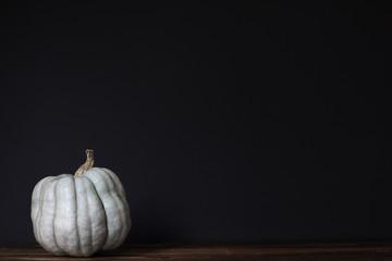 Light green pumpkin on dark background