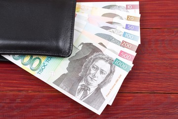 Money from Slovenia in the black wallet