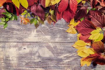 Leaves on vintage wooden boards