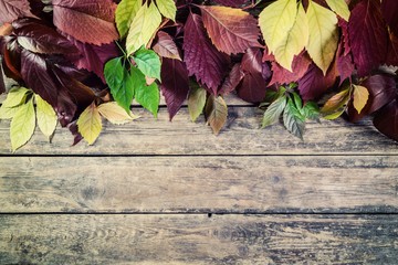 Leaves on vintage wooden boards