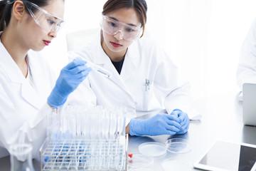 試験管を見つめる二人の女性研究員