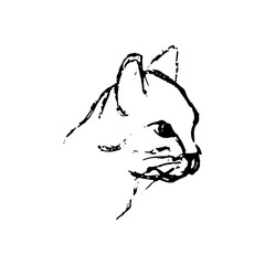 Hand drawn sketch of cat head. Black line drawing of pet isolated on white background. Vector animal illustration.