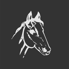Hand drawn sketch of horse head. White line drawing isolated on dark gray background. Mustang portrait. Vector animal illustration. Chalk board imitation.