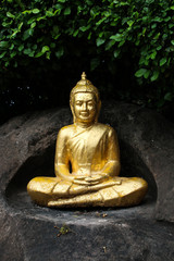Buddha statue on Rocks with Leaves  Background