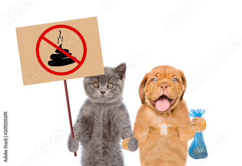 puppy and kitten holds signs