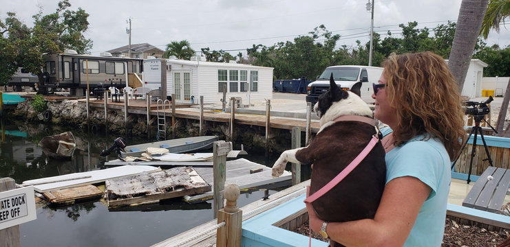 Terri Metter and her Boston Terrier Nikki overlook what's left of destroyed trailers that fill a canal near a trailer park in Marathon