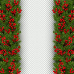 Christmas banner template with vertical border of realistic branches of Christmas tree and holly berries