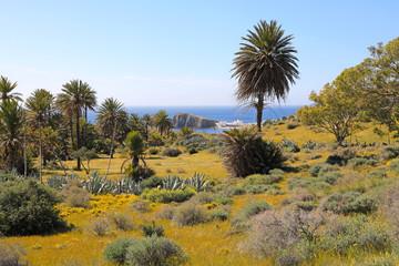 Papier Peint - mar mediterraneo playa isleta del moro almería 4M0A0624-f18