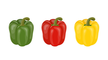 Vector illustration. Set of colorful sweet peppers.