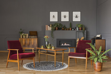 Table with flowers between dark red wooden armchairs in living room interior with fern. Real photo