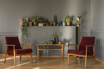 Flowers on wooden table between dark red armchairs in simple grey living room interior. Real photo