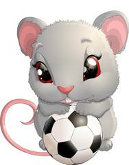 beautiful cute mouse