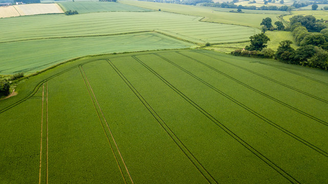 Aerial drone view of neatly ordered farmed fields and crops