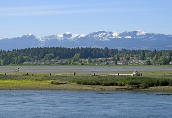 nature landscape at the Courtenay estuary during low tide, Vancouver Island British Columbia Canada