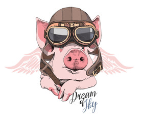 Funny Pig in a retro leather aviator helmet and with a wings. Vector illustration.