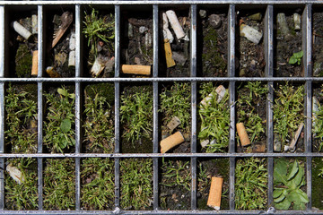 Cigarette butts are seen in a metal grate on a street in Lyon
