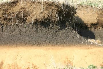 地層の断面