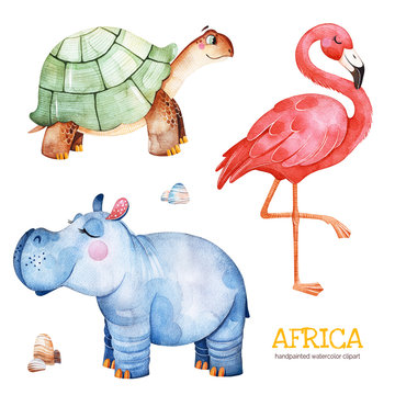 Africa watercolor set.Safari collection with flamingo,hippo,turtle,stones.Watercolor cute animals.Perfect for wallpaper,print,packaging,invitations,Baby shower,patterns,travel,logos etc
