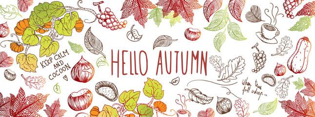 Autumn doodles background