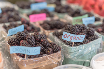 Selective focus, close-up heap of organic blackberries in basket with plastic liner. Fresh blackberry on display at local farmer market in Grapevine, Texas, USA. Defocused strawberries in background