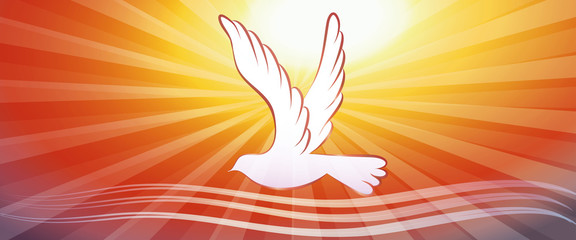 Web banner concept christian baptism with water waves and dove on sunset background