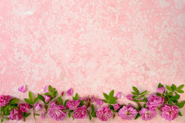 Border of pink roses on a pink old ructic concrete background, top view, copy space