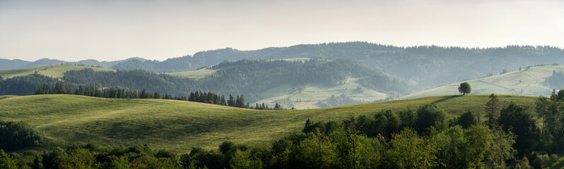 Mountain landscape in the morning. Panorama.