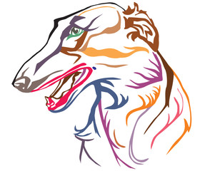 Colorful decorative portrait of Russian Wolfhound vector illustration