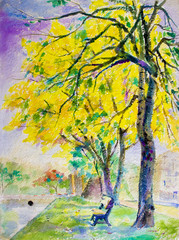 Painting  landscape colorful of golden tree flowers in park street
