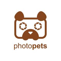 Dog Pet Photography Cute Symbol