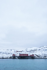 Red house located on the coast of Sakrisoy Village in Lofoten Island,Norway / Winter time