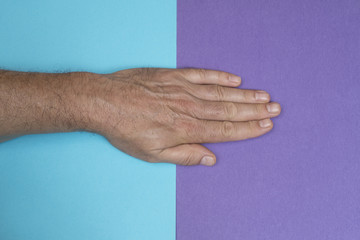 a hand on a two-color surface