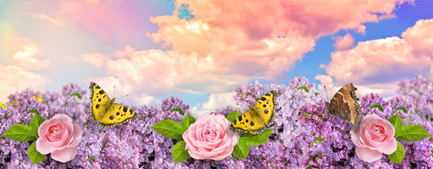 Wall Mural - Lilac flowers with roses and butterflies in garden against the blue sky with spectacular clouds