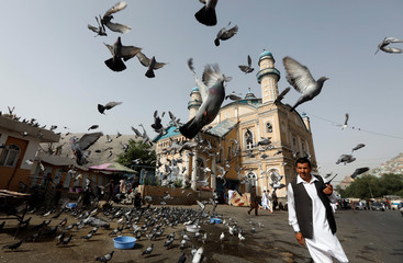 Pigeons fly outside the Shah-e Doh Shamshira Mosque, as people head for morning prayers on Eid-al-Fitr in Kabul Afghanistan