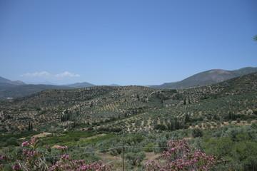 Koutsopodi, Grèce