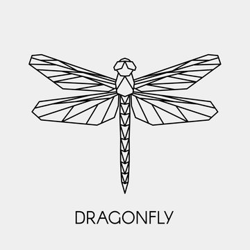 Abstract polygonal dragonfly. Geometric linear animal. Vector illustration.
